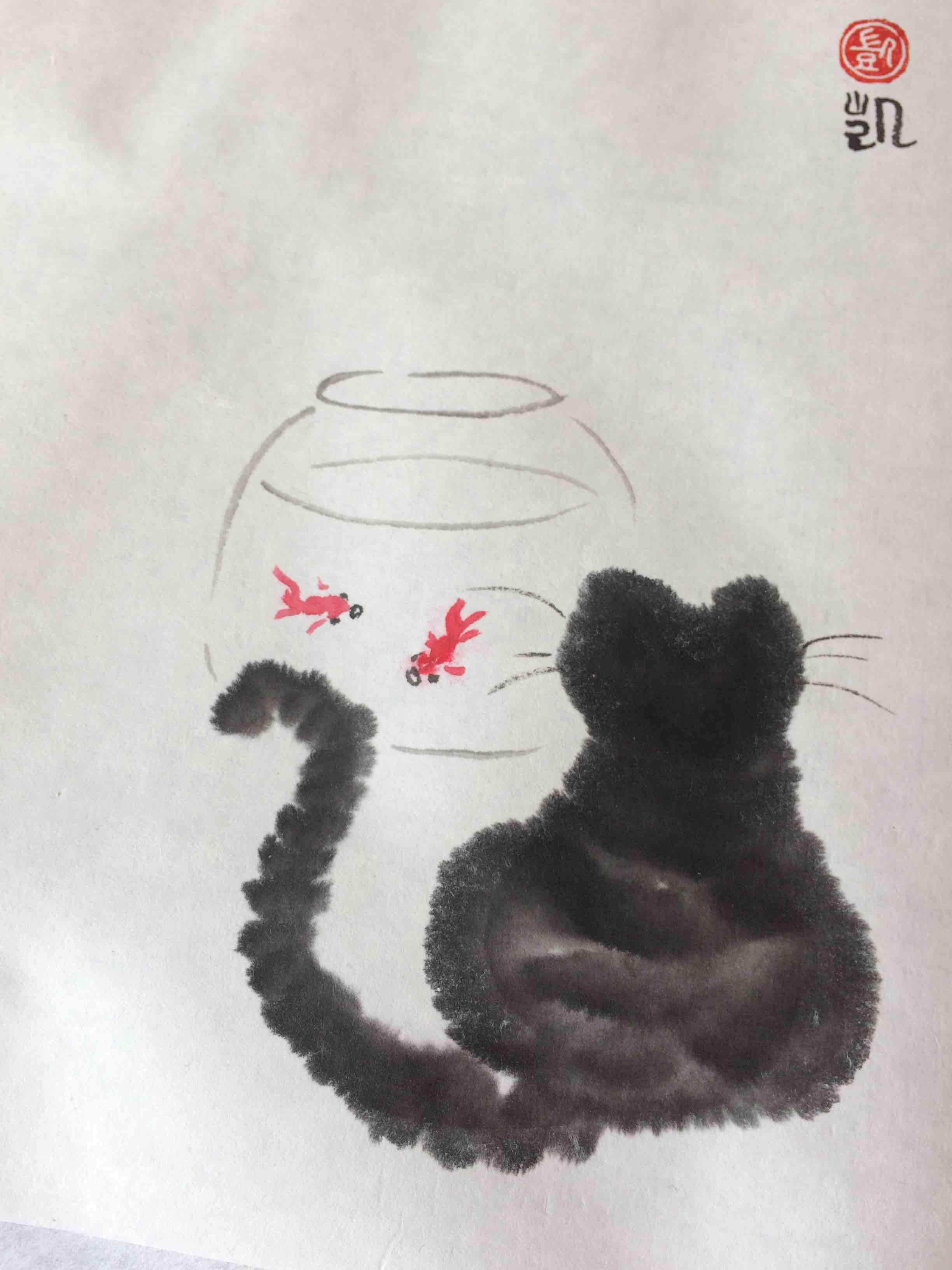 Katze beobachtet Fische