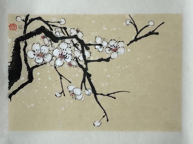 Pflaumenblüten weiss